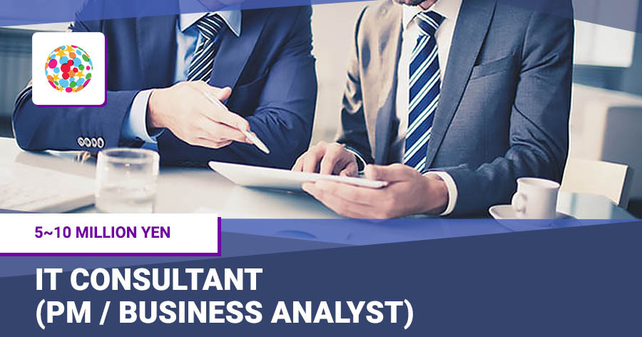 IT consultant (PM / business analyst)