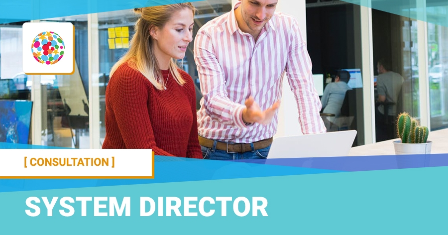 System director