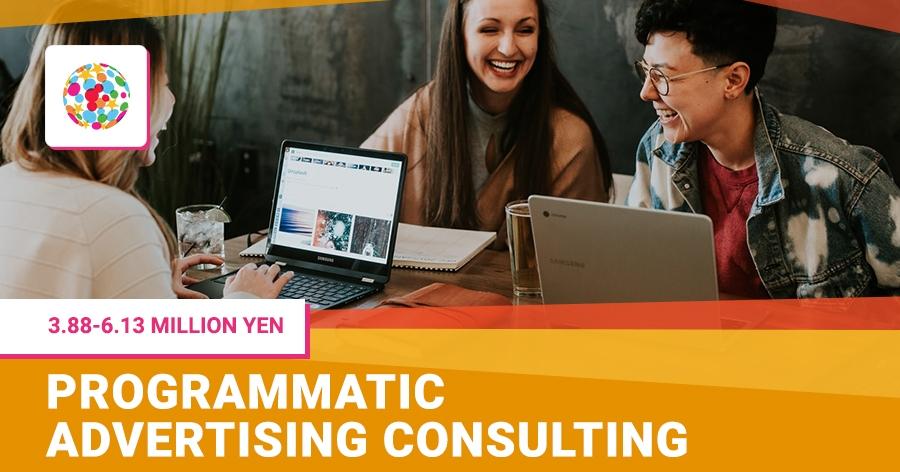 Programmatic advertising consulting